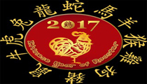 Veterans and friends attend SAFVL Chinese New Year Gathering